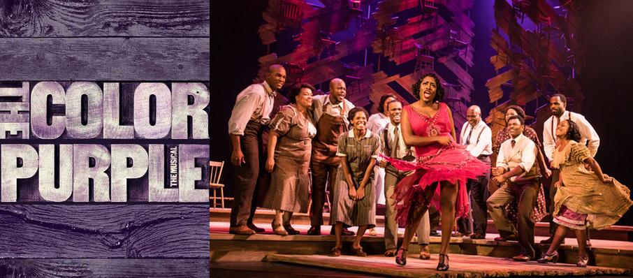 The Color Purple at James K Polk Theater