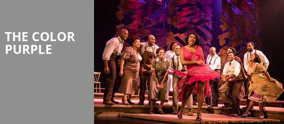 The Color Purple, Andrew Jackson Hall, Nashville